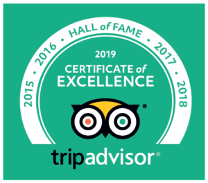 2019 Hall of Fame - Certificate of Excellence
